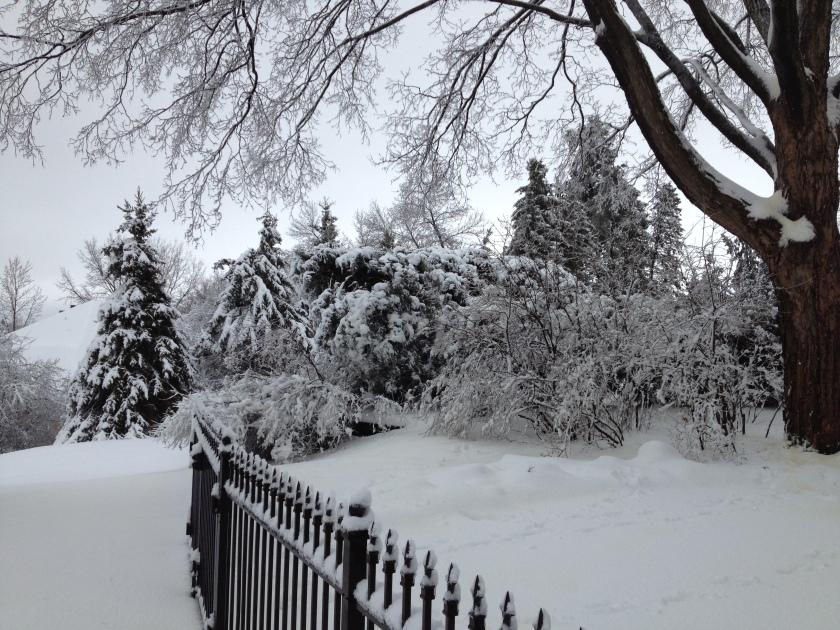 footprints_in_the_snow_in_minnesota