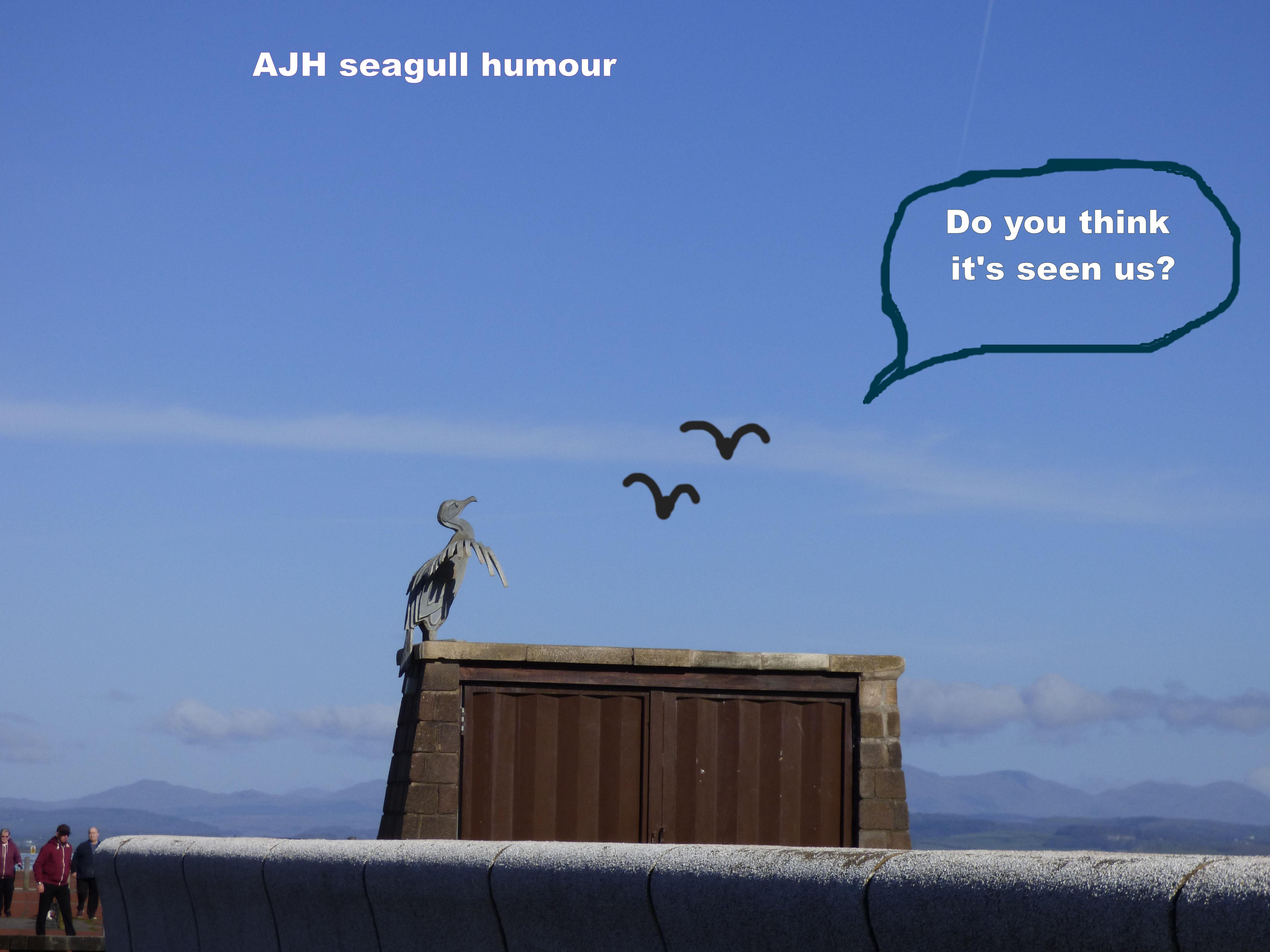 seagull H 2